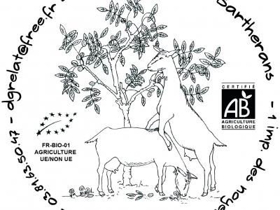 """Cabesan - """"parmesan"""" de chèvre au lait cru - nature (AB)"""