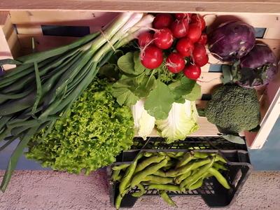 Petit panier de légumes de saison