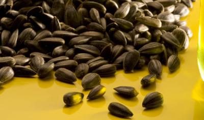Sac de graines de tournesol pour oiseaux