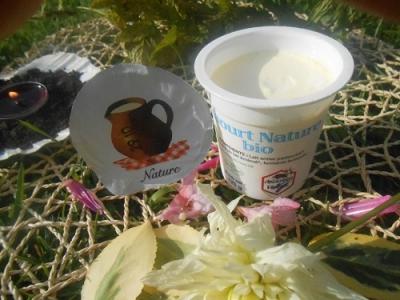 Yaourt nature 125 gr lait entier