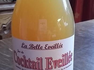 25 cl Jus Cocktail Eveillée