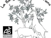 Cabra'zella DOUBLE- chèvre frais façon mozarelle/feta - rondin de 210g min (AB)