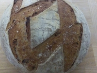 Dauphinois (pain bis aux noix)