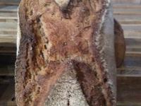 Farro (épeautre de Tartarie) – 600 g