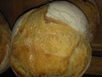 Pugliese (blé dur S Cappelli) – 600 g