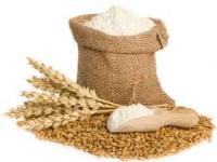 farine de blé 1/2 complet de 1kg issu de variétés anciennes de blé