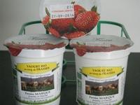 Yaourt biologique au sirop de fraises