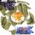 Aubier - palet de chèvre frais au lait cru (AB) - aux feuilles d'arbres et pétales de fleurs
