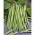 Haricot vert mangetout 500gr